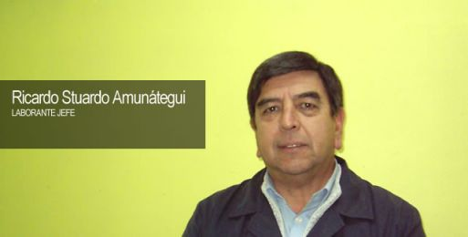 Stuardo Amunátegui, Ricardo